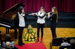 ogs-metkovic-bozicni-koncert-2013 (15)